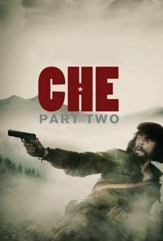 Ver película Che. Parte 2
