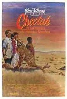 Ver película Cheetah, una aventura africana