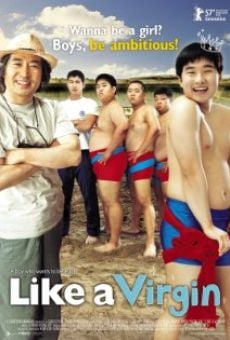 Ver película Cheonhajangsa madonna