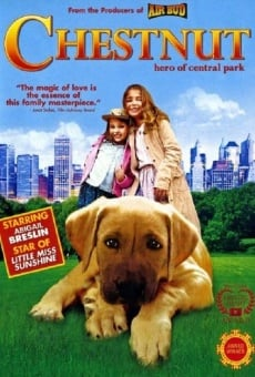 Chestnut - L'eroe di Central Park online streaming