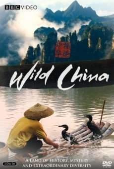 Wild China online kostenlos