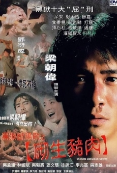 Ver película Chinese Midnight Express