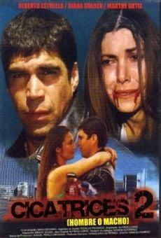 Ver película Cicatrices 2