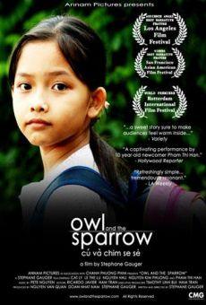 Owl & the Sparrow