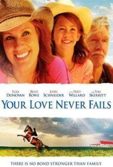 Ver película Cita por San Valentín