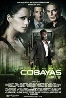 Ver película Cobayas: Human Test