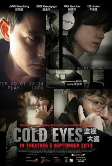 Gamsijadeul - Gam-si-ja-deul (Cold Eyes) online streaming