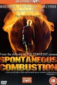 Ver película Combustión espontánea