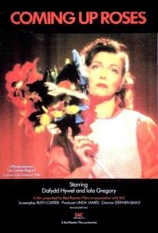 Ver película Coming Up Roses