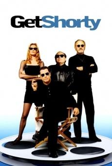 Ver película Cómo conquistar Hollywood
