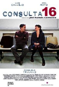 Ver película Consulta 16