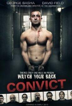 Convict on-line gratuito