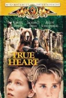 Ver película Corazón de fuego