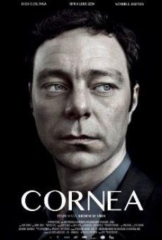 Cornea online