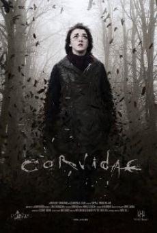 Ver película Corvidae
