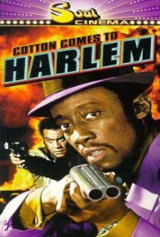 Ver película Algodón en Harlem