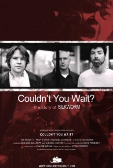 Couldn't You Wait? online streaming