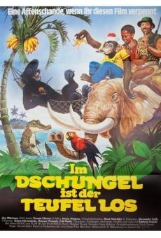Ver película Crazy Jungle Adventure