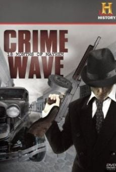 Ver película Crime Wave: 18 Months of Mayhem