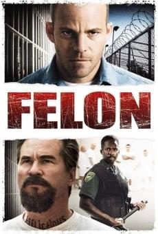 Watch Felon online stream