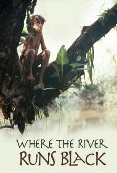 Quand la rivière devient noire