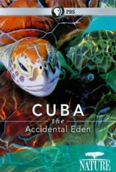 Nature: Cuba: The Accidental Eden online kostenlos