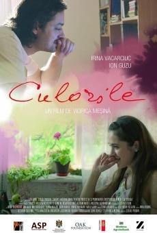 Ver película Culorile