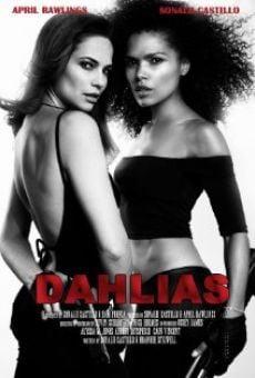 Dahlias: Wild Card online