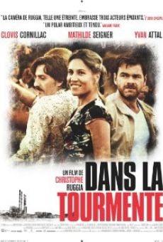 Ver película Dans la tourmente