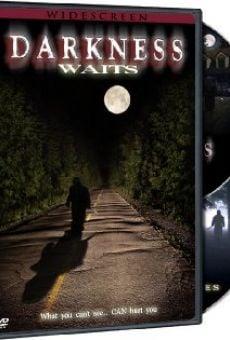 Ver película Darkness Waits
