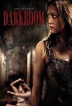 Ver película Darkroom