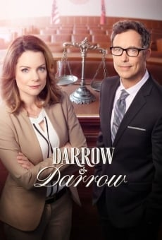 Ver película Darrow y Darrow: despacho de abogados