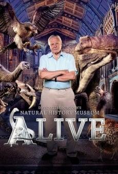 Ver película David Attenborough's Natural History Museum Alive
