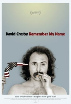 David Crosby: Remember My Name online kostenlos