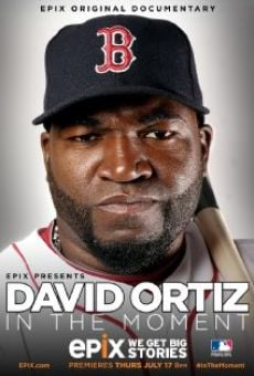 David Ortiz in the Moment online