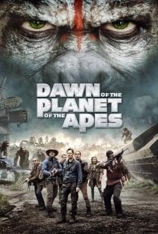L'aube de la planète des singes