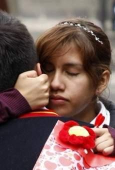 Ver película De México llegó el amor
