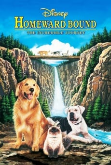 Homeward Bound: The Incredible Journey on-line gratuito