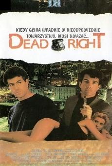Ver película Dead Right