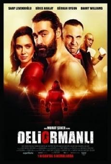 Ver película Deliormanli