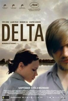 Ver película Delta