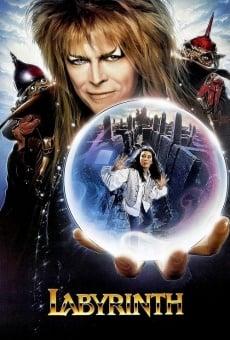 Ver película Dentro del laberinto