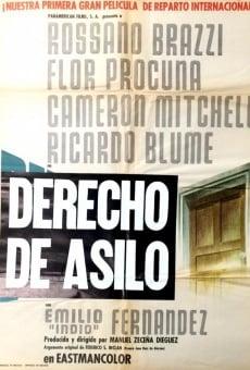Ver película Derecho de asilo