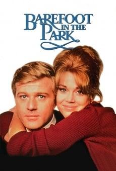 Ver película Descalzos en el parque