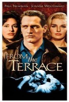 Ver película Desde la terraza