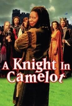 Desmadre en Camelot