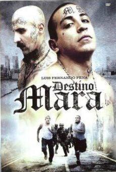 Ver película Destino Mara