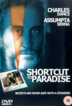 Ver película Desvío al paraíso