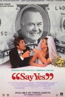 Ver película ¡Di que sí!