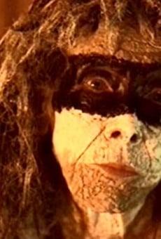 Die Amazonen - Mythos und Legende der geheimnisvollen Kriegerinnen gratis